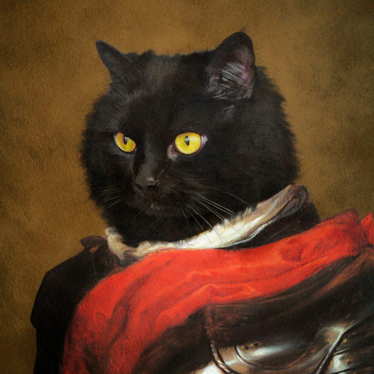 Gato-Mónica